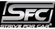 strive for car logo